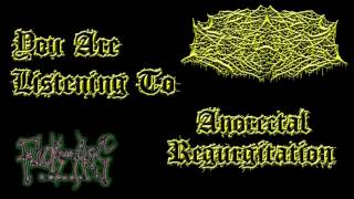 Cranial Discharge - Anorectal Regurgitation (Disgorged Foetus Cover)