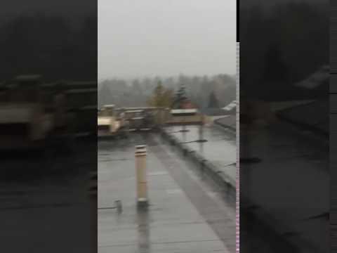 Rain Seattle Mp3