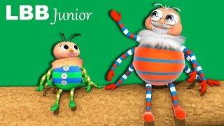The Spider Song | Original Kids Songs | By LBB Junior