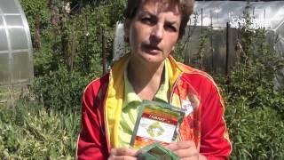 видео Средства для защиты растений