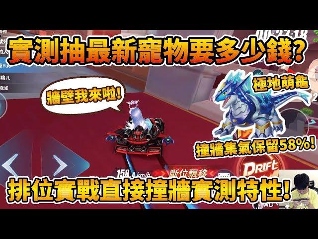 【小草Yue】實測抽最新寵物『極地龍龜』要多少錢?適合新手的特性!撞牆集氣保留58%!【極速領域】