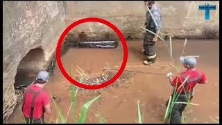 10 Craziest & Bravest People In The World You Won't Believe Exist  People Are Awesome