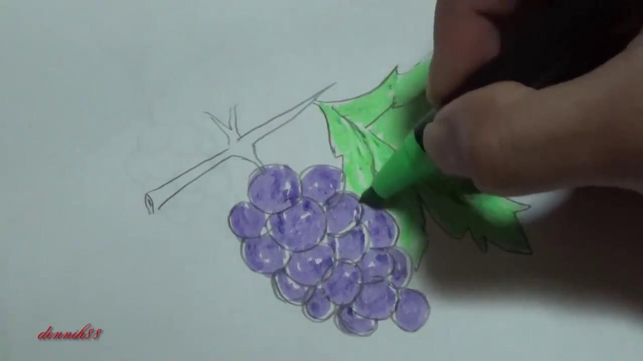Cara Menggambar Dan Mewarnai Buah Anggur Youtube
