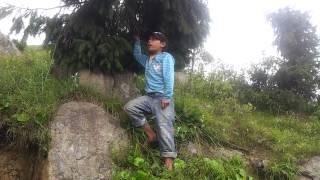A young Himachali boy sings a beautiful hindi song
