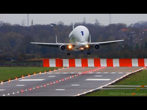 Airbus BELUGA Fantastic