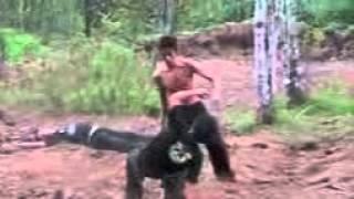 Trailer   Harimau Singgalang Pencak Silat   Volume 2   YouTube