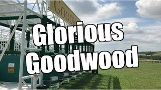 Betfair trading - Glorious Goodwood Racing - Peter Webb: Bet Angel Software