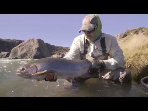 Fly Fishing Argentina   Freaks of Nature   Trailer