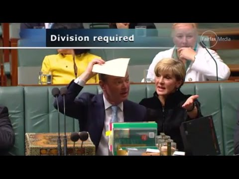 Scum! Grub! Disgrace! 45th Australian Parliament gets back to name calling