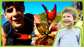 Catching Crayfish At Crater Lake thumbnail