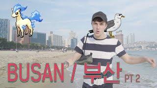 Memes on the Beach??… NyamNyeo + Korea's Best Food   BUSAN TRAVEL GUIDE
