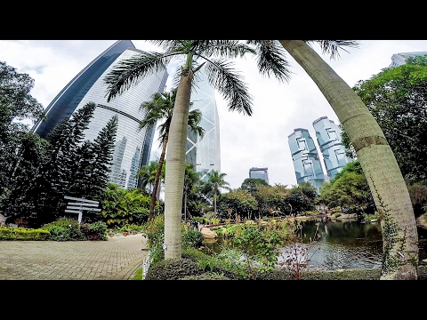 A Walk Around Hong Kong Park, a Green Spot in the Concrete Jungle