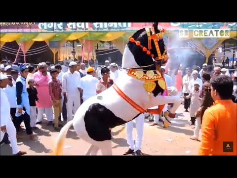 Tajuddin Baba I Tajbaag Shahi Sandal I URS 2017 I 18 OCT 2017