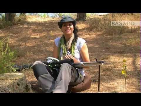 Ana Pereira - Video Interview
