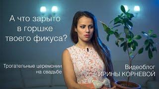 �������� ���� Трогательные церемонии на свадьбе Письма в будущее молодоженов Wedding blog Ирины Корневой ������