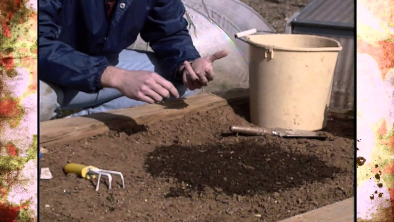 When Is It Safe To Plant A Garden In Oklahoma