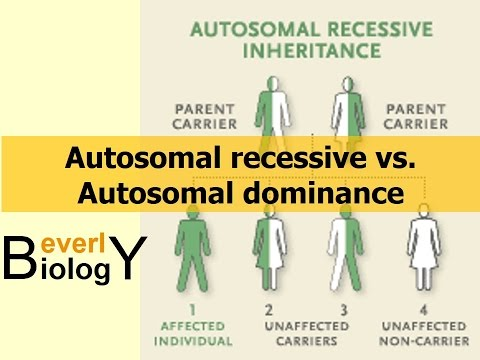 Autosomal Recessive Vs. Autosomal Dominance