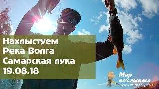 Нахлыстом окуня и краснопёрку на средней волге - World fly fishing