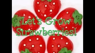VEDA DAY 24~Baby Girl grows Strawberries