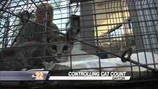 Humane Society Plans To Trap, Neuter, Release Dayton's Problem Cats
