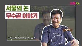 서울의 논 [무수골 이야기]  - 서울문화재단 청년 크…