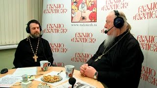 Радио «Радонеж». Протоиерей Димитрий Смирнов. Видеозапись прямого эфира от 2017.04.08