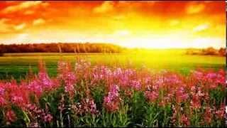 Floral Dance  (Gheorghe Zamfir)  Instr
