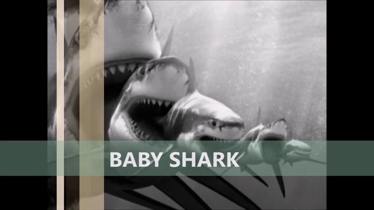 BABY SHARK AUTO11 - YouTube