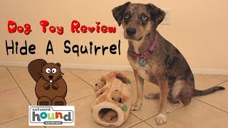 Outward Hound Hide-A-Squirrel Dog Toy Review - Abileen Channel