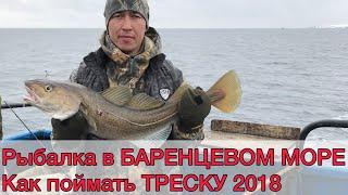 Морська риболовля. Баренцове море. півострів Рибачий. Сніг, вітер і тріска