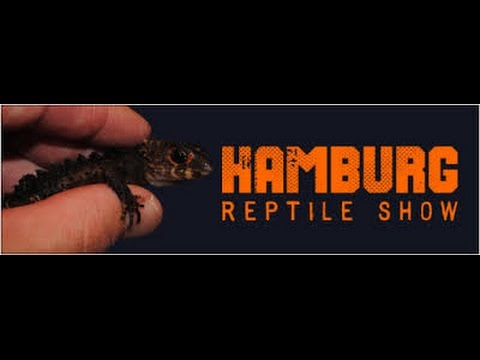 Hamburg reptile show 2016
