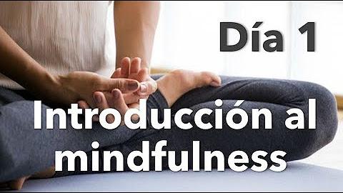 Meditación Guiada Elefante Zen Youtube