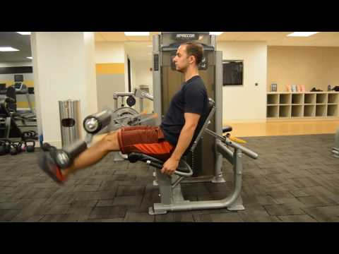 The Best Leg Exercises for Muscle Definition