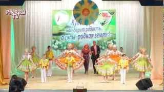 Открытие года культуры в Прокопьевском районе