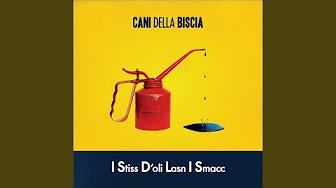 Buon Natale Cani Della Biscia.Top Tracks Cani Della Biscia Youtube
