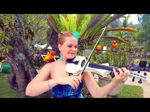 Malargale tamil song violin cover by Helga