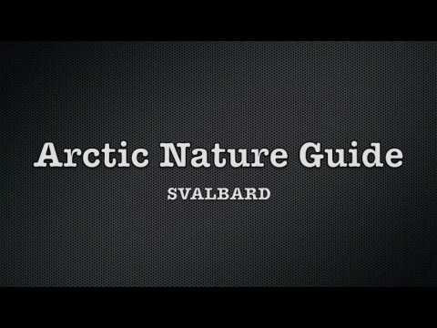 Arctic Nature Guide