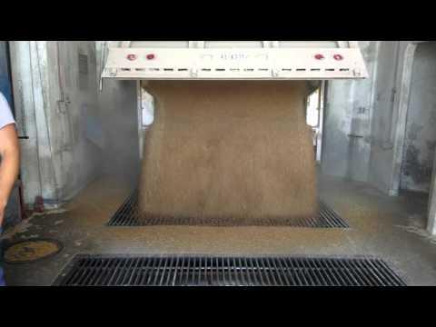 Wilkens X-treme Wide Belt Unloading Grain