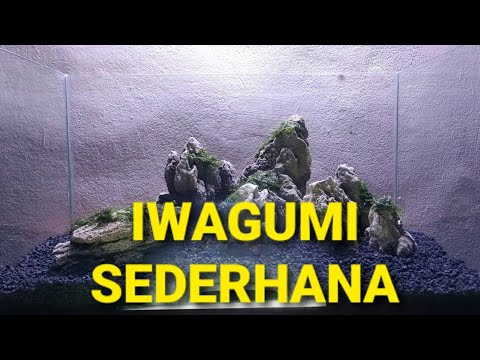 tutorial-iwagumi-aquascape-simpel