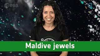 Earth from space: Maldive jewels