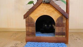 Дом для котика своими руками / DIY cat house