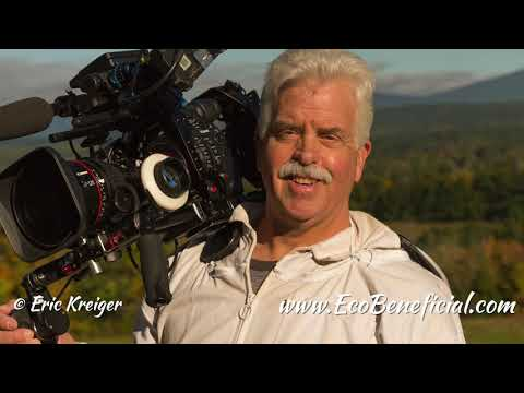 """""""The Pollinators"""" Documentary: EcoBeneficial Interview With Peter Nelson, Director & Filmmaker"""