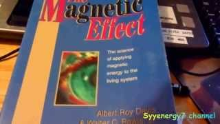 magnetic therapy bio north vs magnetic north