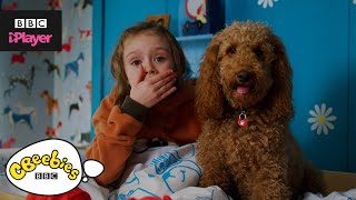 Waffle the Wonder Dog Song Compilation | CBeebies
