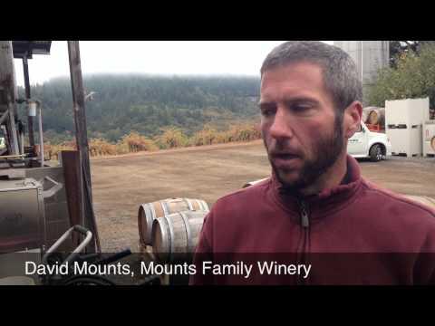 Mounts Family Winery