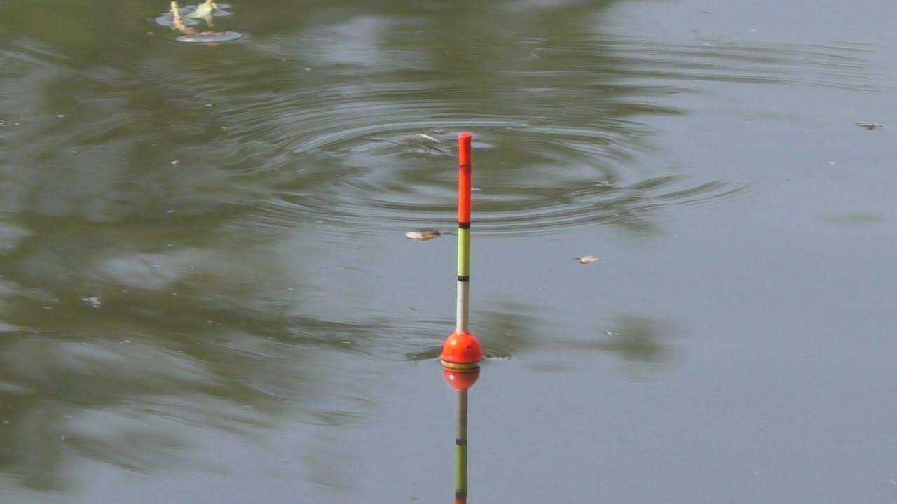 рыбалка на пробку на реке