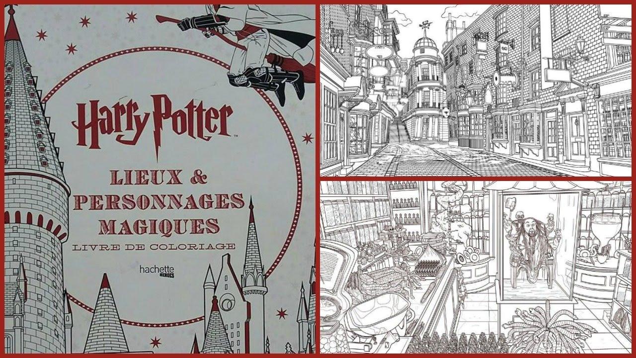 Harry Potter Lieux Et Personnages Magiques N 2
