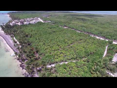 RE/MAX Island Real Estate: Habaneros Beachfront Lot