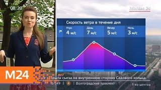 """Смотреть видео """"Утро"""": небольшие дожди ожидаются в столице 21 мая - Москва 24 онлайн"""