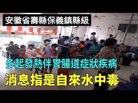 洪灾后 安徽寿县保义镇近五百人发烧等(图/视频)